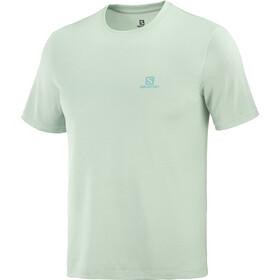 Salomon Explr SS T-shirt Herrer, grøn